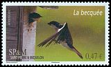 Cl: Tree Swallow (Tachycineta bicolor) SG 1143 (2012)  [5/54]