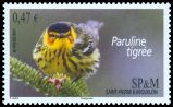 Cl: Cape May Warbler (Dendroica tigrina) <<Paruline tigree>>  SG 1121 (2011)  [10/7]