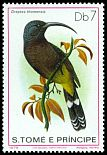 Cl: Sao Tome Sunbird (Dreptes thomensis)(not catalogued)  (1979)