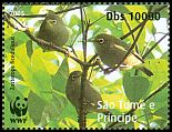 Cl: Sao Tome White-eye (Zosterops ficedulinus)(Endemic or near-endemic) (not catalogued)  (2008)  [4/50]