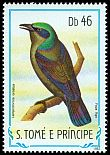 Cl: Principe Glossy-Starling (Lamprotornis ornatus) <<Papa figo>> (not catalogued)  (1983)