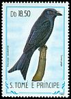 Cl: Velvet-mantled Drongo (Dicrurus modestus) <<Tom&eacute;-gaga>> (not catalogued)  (1983)