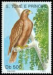 Cl: Black Kite (Milvus migrans) <<Falc&atilde;o>> (not catalogued)  (1993)