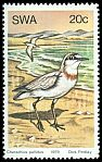 Cl: Chestnut-banded Plover (Charadrius pallidus) SG 332 (1979) 50