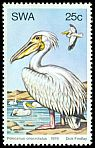 Cl: Great White Pelican (Pelecanus onocrotalus) SG 333 (1979) 55