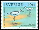 Cl: Pied Avocet (Recurvirostra avosetta) <<Skärfläcka>> (Repeat for this country)  SG 2295 (2003) 240