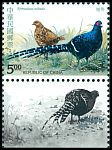 Cl: Mikado Pheasant (Syrmaticus mikado)(Endemic or near-endemic)  SG 2164 (1993)