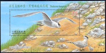 Cl: Chinese Crested Tern (Sterna bernsteini)(Endemic or near-endemic)  SG 2802b (2002)