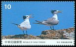 Cl: Chinese Crested Tern (Sterna bernsteini)(Endemic or near-endemic)  new (2017)