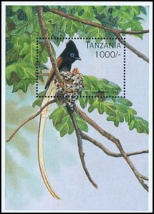 Tanzania not catalogued (1996)