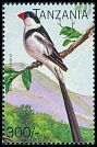 Cl: Pin-tailed Whydah (Vidua macroura)(not catalogued)  (1996)