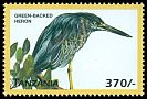 Cl: Striated Heron (Butorides striata)(Out of range) (not catalogued)  (1999)
