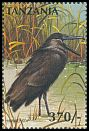 Cl: Hamerkop (Scopus umbretta)(Repeat for this country) (not catalogued)  (1997)