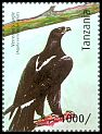 Cl: Verreaux's Eagle (Aquila verreauxii)(I do not have this stamp)  new (2012)  [8/15]