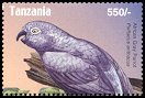 Cl: Grey Parrot (Psittacus erithacus)(Repeat for this country) (not catalogued)  (2004)  [3/24]