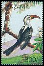 Cl: Red-billed Hornbill (Tockus erythrorhynchus)(not catalogued)  (1996)