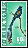 Cl: Long-tailed Widowbird (Euplectes progne)(Out of range)  SG 896 (1972) 80