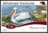 Cl: Dalmatian Pelican (Pelecanus crispus)(Out of range) (I do not have this stamp)  new (2014)