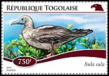 Cl: Red-footed Booby (Sula sula)(Out of range) (I do not have this stamp)  new (2014)