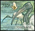 Cl: Sacred Ibis (Threskiornis aethiopicus)(I do not have this stamp)  new (2011)  [7/35]