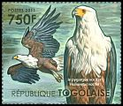 Cl: African Fish-Eagle (Haliaeetus vocifer)(Repeat for this country) (I do not have this stamp)  new (2011)  [7/35]
