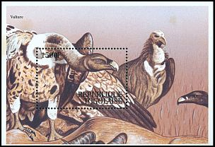 Cl: White-backed Vulture (Gyps africanus) SG 2145 (1995)