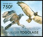 Cl: Black-breasted Snake-Eagle (Circaetus pectoralis)(Out of range) (I do not have this stamp)  new (2011)  [7/42]