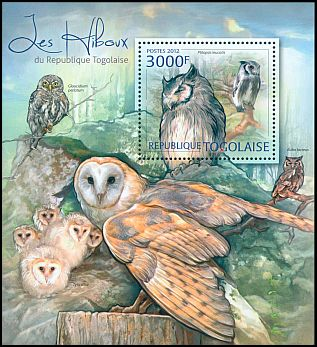Cl: Northern White-faced Owl (Ptilopsis leucotis)(I do not have this stamp)  new (2012)  [7/58]