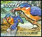 Cl: Malachite Kingfisher (Alcedo cristata)(I do not have this stamp)  new (2011)  [7/35]