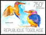 Cl: African Pygmy-Kingfisher (Ispidina picta)(Repeat for this country)  new (2013)  [9/7]