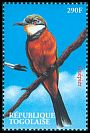 Cl: Cinnamon-chested Bee-eater (Merops oreobates)(Out of range)  new (2000)