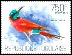 Cl: Northern Carmine Bee-eater (Merops nubicus)(Repeat for this country)  new (2013)  [9/15]