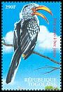 Cl: Eastern Yellow-billed Hornbill (Tockus flavirostris)(Out of range)  new (2000)