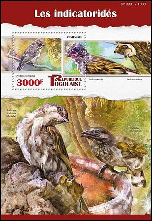 Cl: Least Honeyguide (Indicator exilis)(I do not have this stamp)  new (2015)