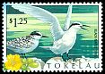 Cl: Black-naped Tern (Sterna sumatrana)(Repeat for this country)  SG 304 (1999)