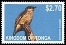 Cl: Polynesian Starling (Aplonis tabuensis) SG 1628 (2012)  [5/23]