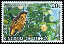 Cl: Polynesian Starling (Aplonis tabuensis)(Repeat for this country)  SG 1678 (2013)  [11/14]