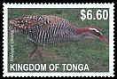 Cl: Buff-banded Rail (Gallirallus philippensis)(Repeat for this country)  SG 1633 (2012)  [5/23]