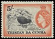 Cl: Inaccessible Island Rail (Atlantisia rogersi) SG 26 (1954) 5000 [5/21]