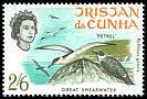 Cl: Greater Shearwater (Puffinus gravis) <<Petrel>>  SG 116 (1968) 90