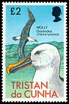 Cl: Yellow-nosed Albatross (Thalassarche chlororhynchos) <<Molly>>  SG 231 (1977) 375