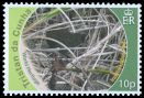 Cl: Inaccessible Island Rail (Atlantisia rogersi)(Endemic or near-endemic) (I do not have this stamp)  SG 997 (2010)  [7/2]