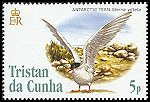 Cl: Antarctic Tern (Sterna vittata)(Repeat for this country)  SG 835 (2005)  [3/56]