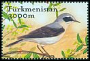 Cl: Northern Wheatear (Oenanthe oenanthe) SG 111a3 (2002)