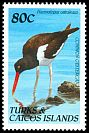Cl: American Oystercatcher (Haematopus palliatus)(Repeat for this country)  SG 1056 (1990)