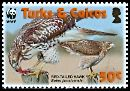 Cl: Red-tailed Hawk (Buteo jamaicensis)(Repeat for this country)  SG 1870 (2007)  [4/41]