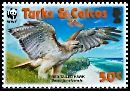 Cl: Red-tailed Hawk (Buteo jamaicensis)(Repeat for this country)  SG 1872 (2007)  [4/41]
