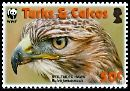 Cl: Red-tailed Hawk (Buteo jamaicensis)(Repeat for this country)  SG 1873 (2007)  [4/41]