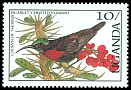 Cl: Scarlet-chested Sunbird (Chalcomitra senegalensis)(Repeat for this country)  SG 561 (1987)