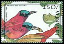 Cl: Northern Carmine Bee-eater (Merops nubicus) SG 567 (1987) 0